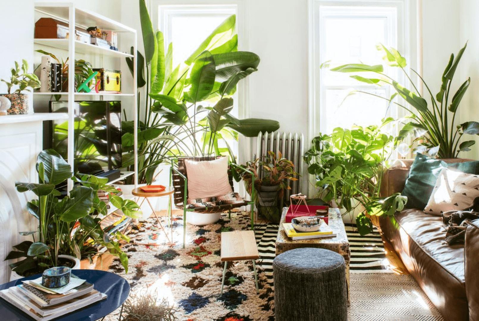 Thiết kế nội thất phong cách organic thân thiện với môi trường