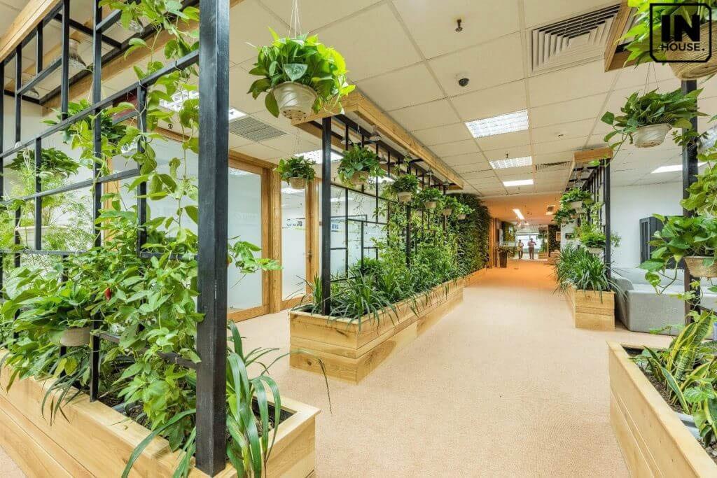 Không gian xanh cho văn phòng